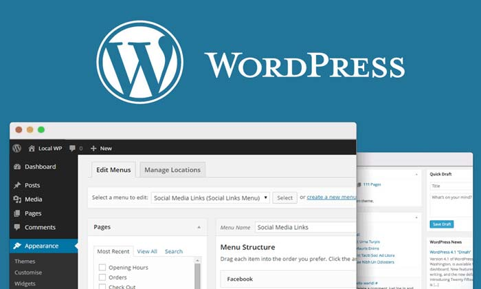 WordPress Websites: The Latest and Best Solutions for SEOs