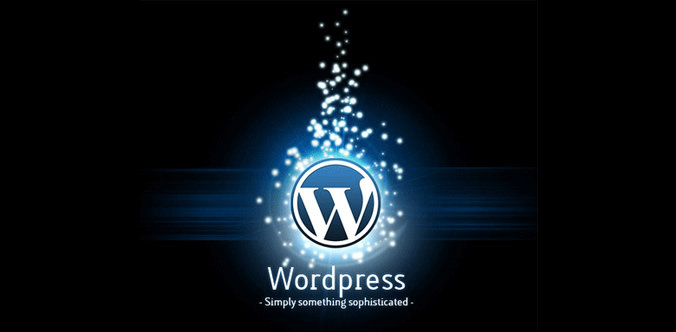 WordPress CMS for websites