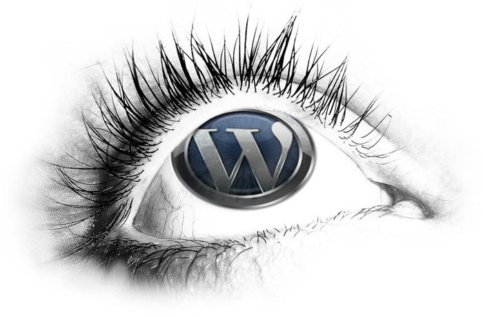 wordpress cms website